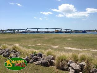 The Sidney Poitier Bridge