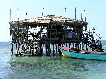 pelicanbar1-1106